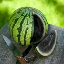 一个来自非洲的西瓜